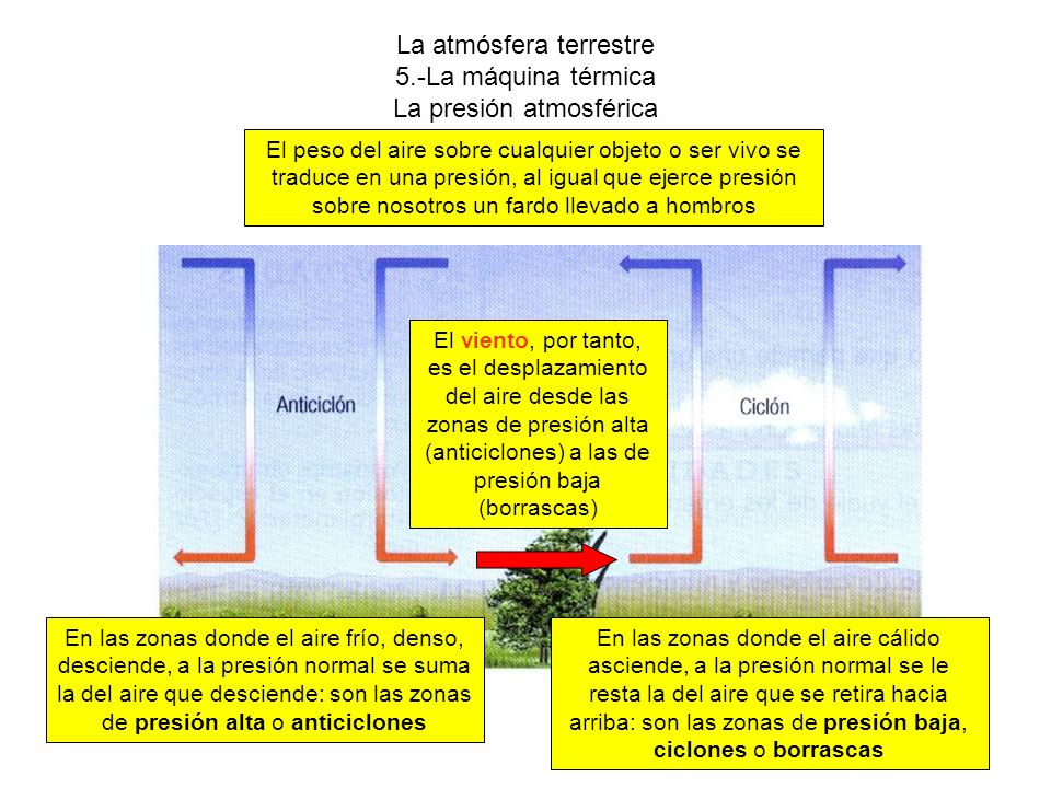 La atmósfera terrestre 5.-La máquina térmica La presión atmosférica El peso del aire sobre cualquier objeto o ser vivo se traduce en una presión, al igual que ejerce presión sobre nosotros un fardo llevado a hombros En las zonas donde el aire frío, denso, desciende, a la presión normal se suma la del aire que desciende: son las zonas de presión alta o anticiclones En las zonas donde el aire cálido asciende, a la presión normal se le resta la del aire que se retira hacia arriba: son las zonas de presión baja, ciclones o borrascas El viento, por tanto, es el desplazamiento del aire desde las zonas de presión alta (anticiclones) a las de presión baja (borrascas)