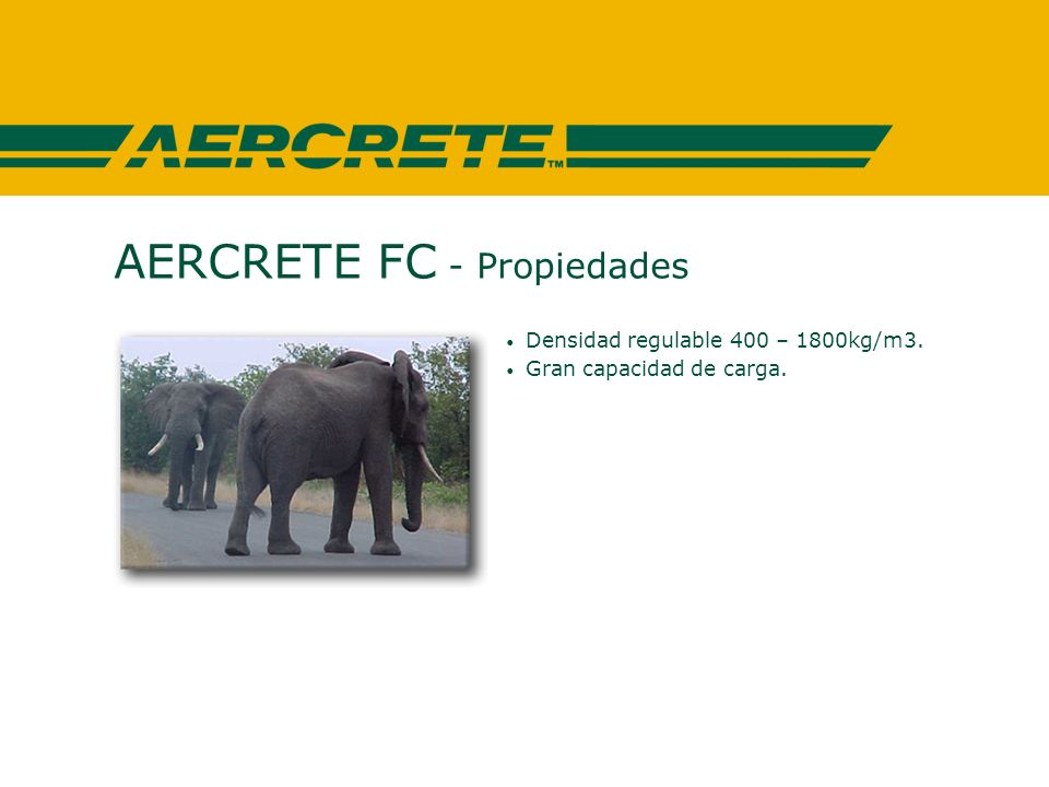 AERCRETE FC - Campos de aplicación AERCRETE FC para productos prefabricados Paredes y piezas para techado Vigas