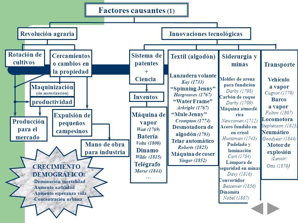 Factores causantes (1) Expulsión de pequeños campesinos Revolución agrariaInnovaciones tecnológicas Producción para el mercado Mano de obra para indus