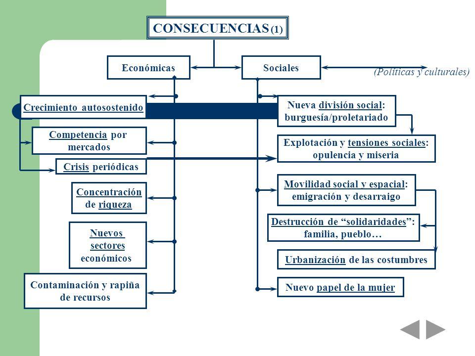 CONSECUENCIAS (1) EconómicasSociales Crecimiento autosostenido Competencia por mercados Crisis periódicas Concentración de riqueza Nuevos sectores eco