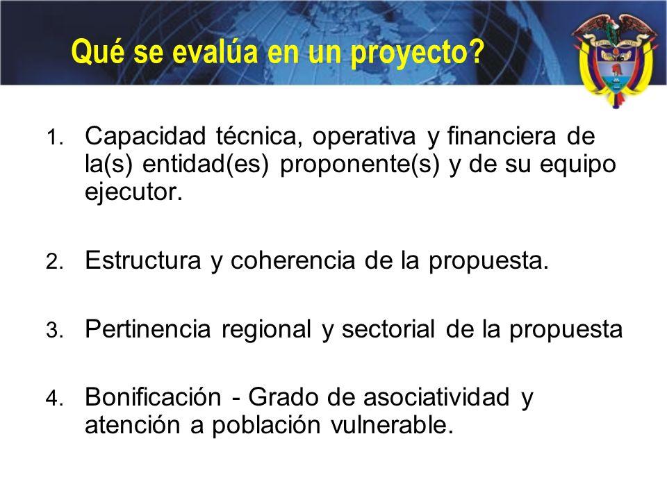 Qué se evalúa en un proyecto? 1. Capacidad técnica, operativa y financiera de la(s) entidad(es) proponente(s) y de su equipo ejecutor. 2. Estructura y