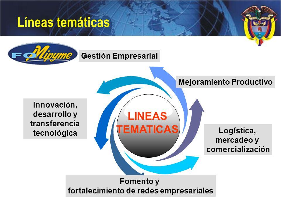 Logística, mercadeo y comercialización Mejoramiento Productivo Innovación, desarrollo y transferencia tecnológica Fomento y fortalecimiento de redes e