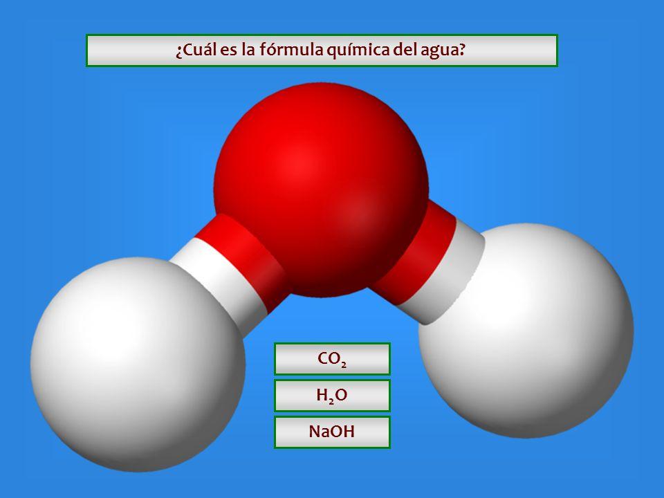 ¿ Cuáles son los componentes de la tiza o gis? Yeso y Caliza Yeso y Arcilla Cal y Arcilla