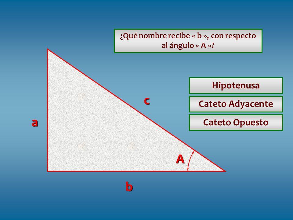¿Qué nombre recibe « b », con respecto al ángulo « A ».