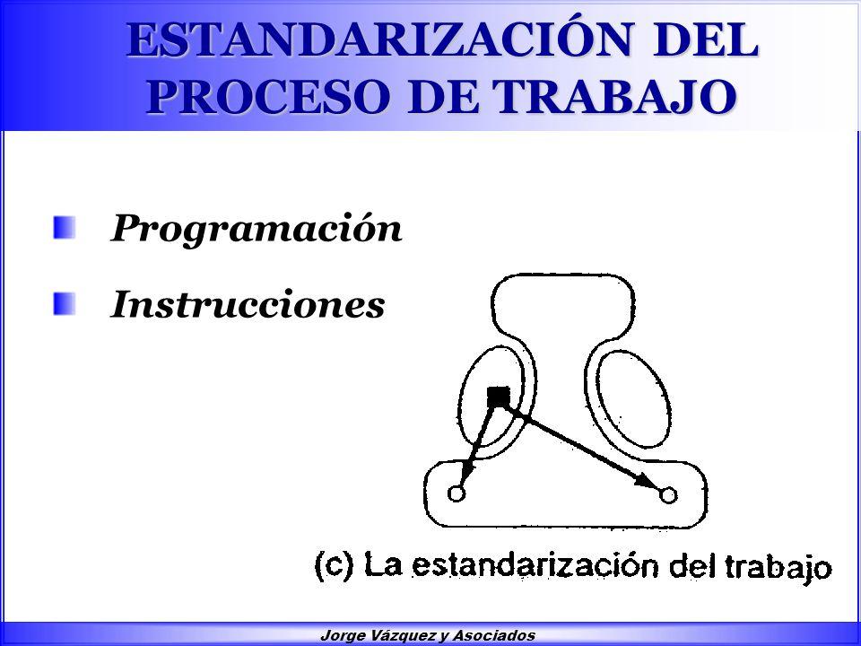 Jorge Vázquez y Asociados ESTANDARIZACIÓN DEL PROCESO DE TRABAJO Programación Instrucciones