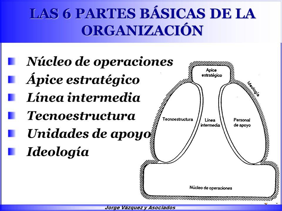 Jorge Vázquez y Asociados LAS 6 PARTES BÁSICAS DE LA ORGANIZACIÓN Núcleo de operaciones Ápice estratégico Línea intermedia Tecnoestructura Unidades de