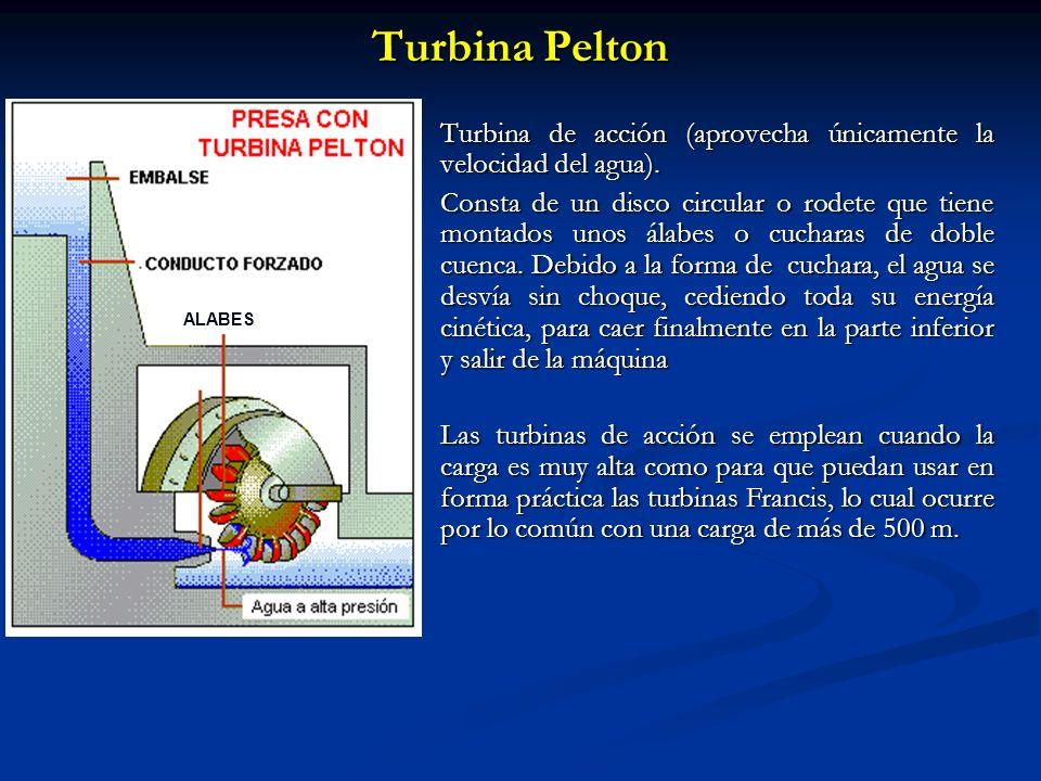 Turbina Pelton Turbina de acción (aprovecha únicamente la velocidad del agua). Consta de un disco circular o rodete que tiene montados unos álabes o c