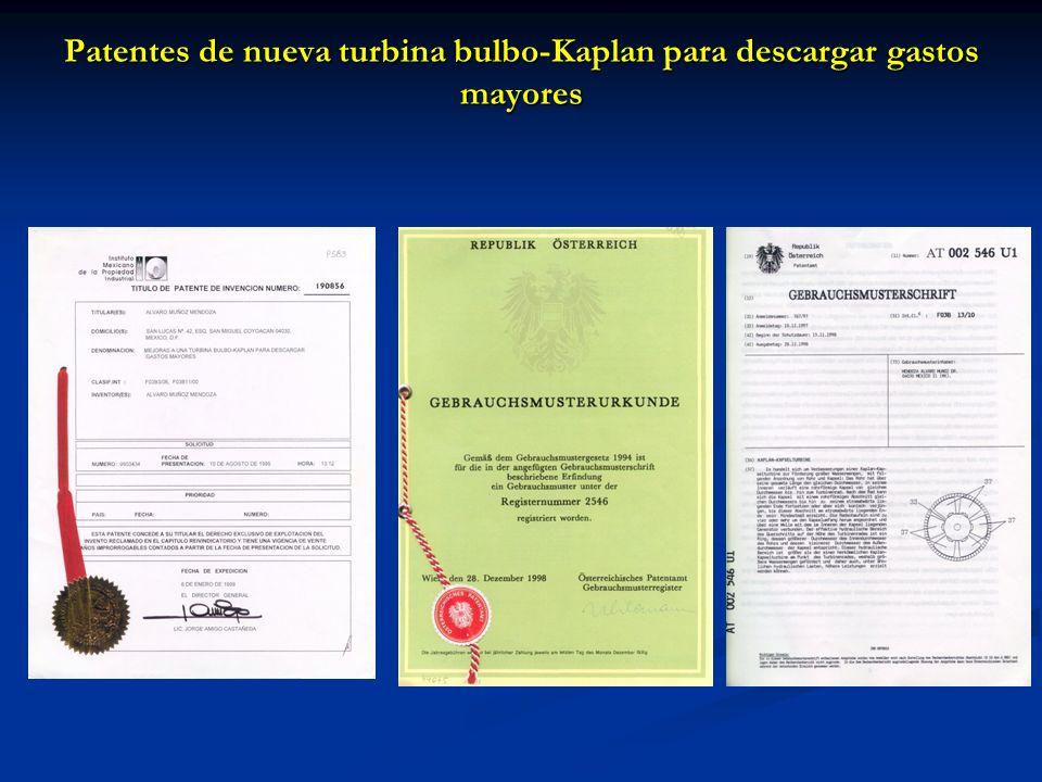 Patentes de nueva turbina bulbo-Kaplan para descargar gastos mayores