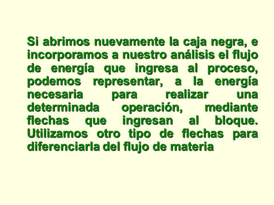 Si abrimos nuevamente la caja negra, e incorporamos a nuestro análisis el flujo de energía que ingresa al proceso, podemos representar, a la energía n