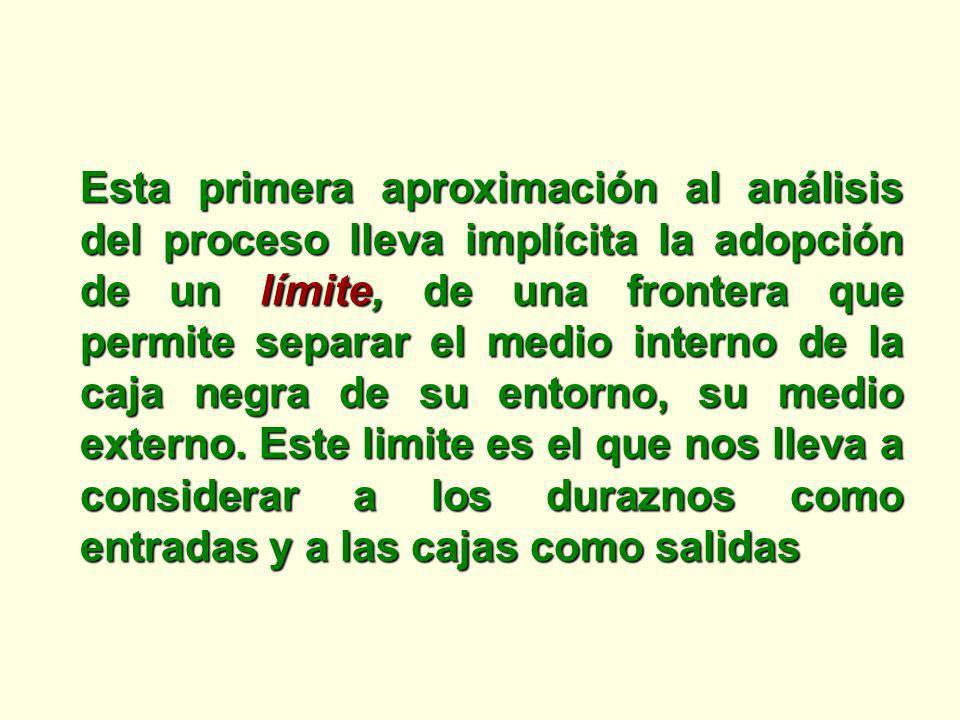 Esta primera aproximación al análisis del proceso lleva implícita la adopción de un límite, de una frontera que permite separar el medio interno de la