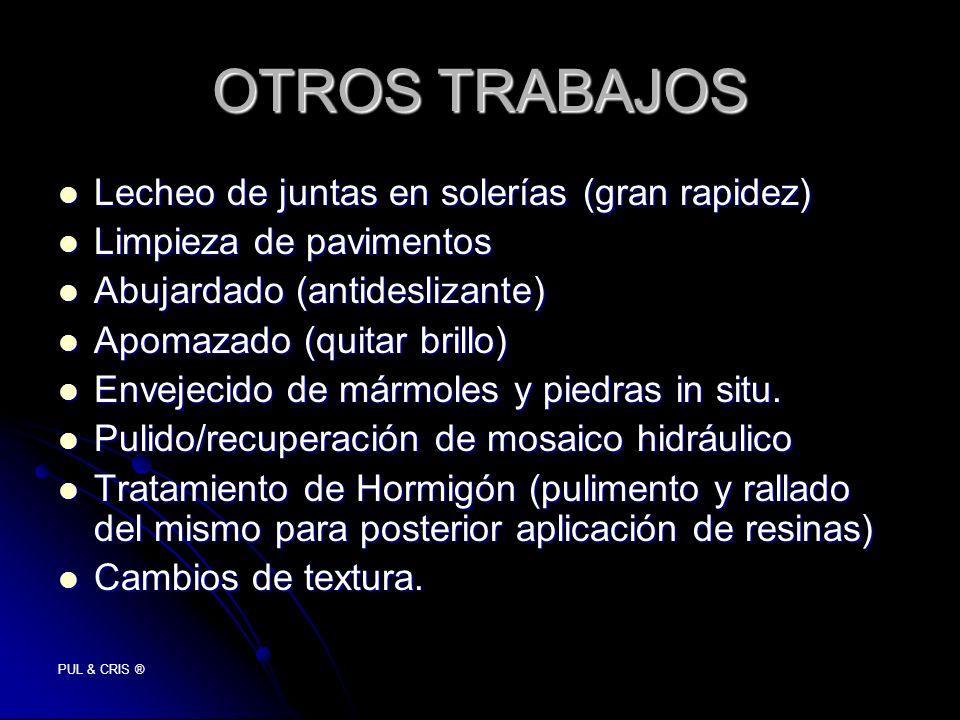PUL & CRIS ® OTROS TRABAJOS Lecheo de juntas en solerías (gran rapidez) Lecheo de juntas en solerías (gran rapidez) Limpieza de pavimentos Limpieza de