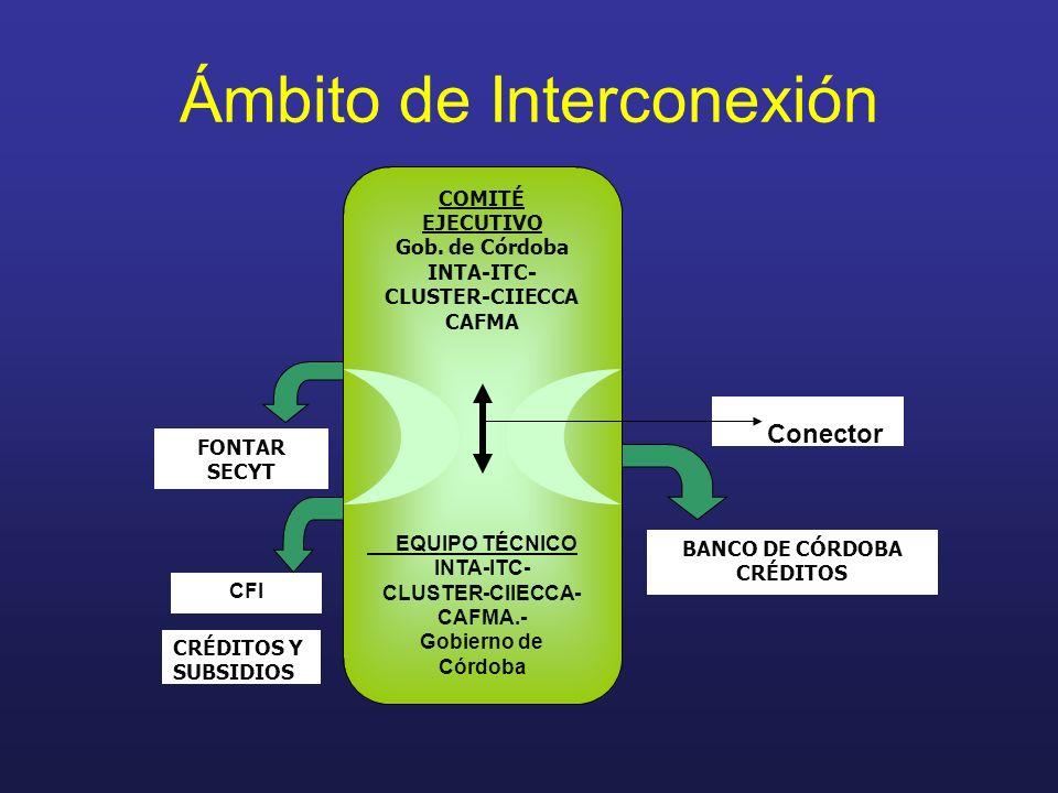 Ámbito de Interconexión Conector CRÉDITOS Y SUBSIDIOS BANCO DE CÓRDOBA CRÉDITOS COMITÉ EJECUTIVO Gob. de Córdoba INTA-ITC- CLUSTER-CIIECCA CAFMA EQUIP