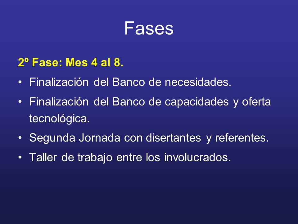 2º Fase: Mes 4 al 8. Finalización del Banco de necesidades. Finalización del Banco de capacidades y oferta tecnológica. Segunda Jornada con disertante