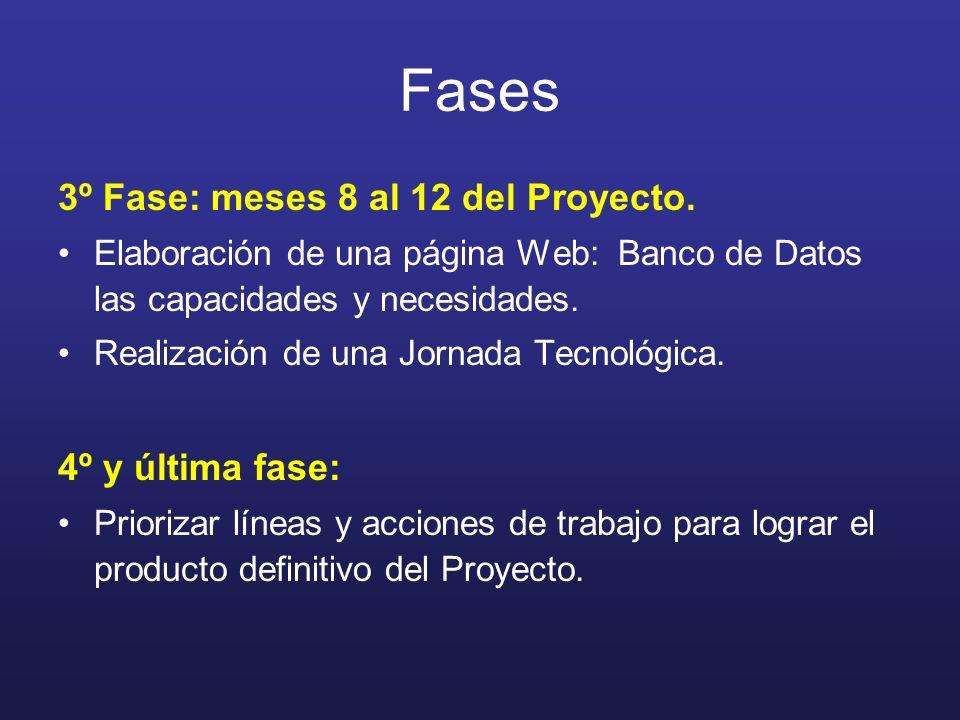 Fases 3º Fase: meses 8 al 12 del Proyecto. Elaboración de una página Web: Banco de Datos las capacidades y necesidades. Realización de una Jornada Tec