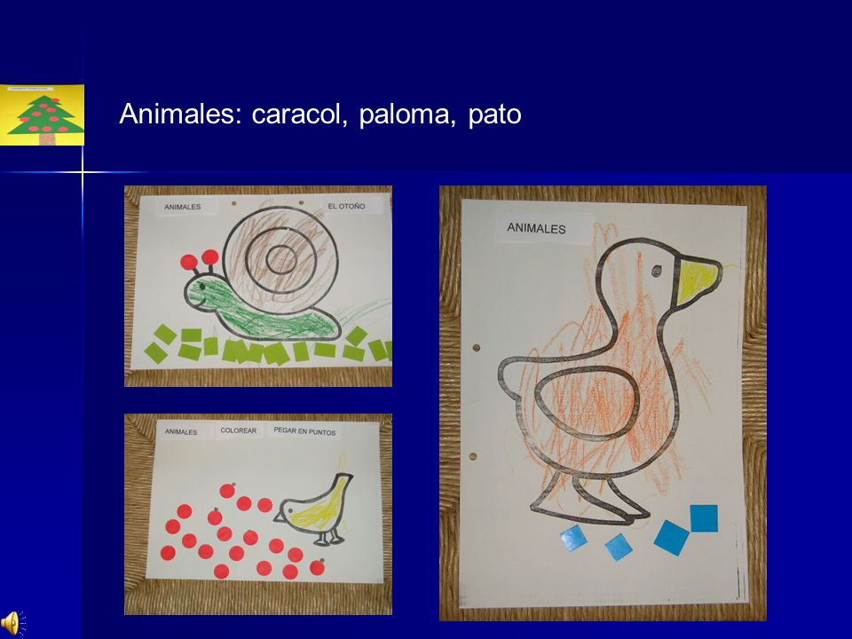 Animales: caracol, paloma, pato