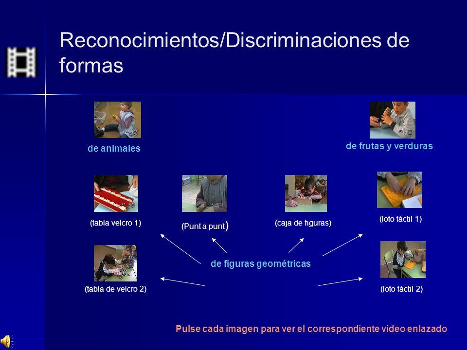 Reconocimientos/Discriminaciones de formas de animales de figuras geométricas de frutas y verduras (tabla velcro 1) (loto táctil 1) (tabla de velcro 2