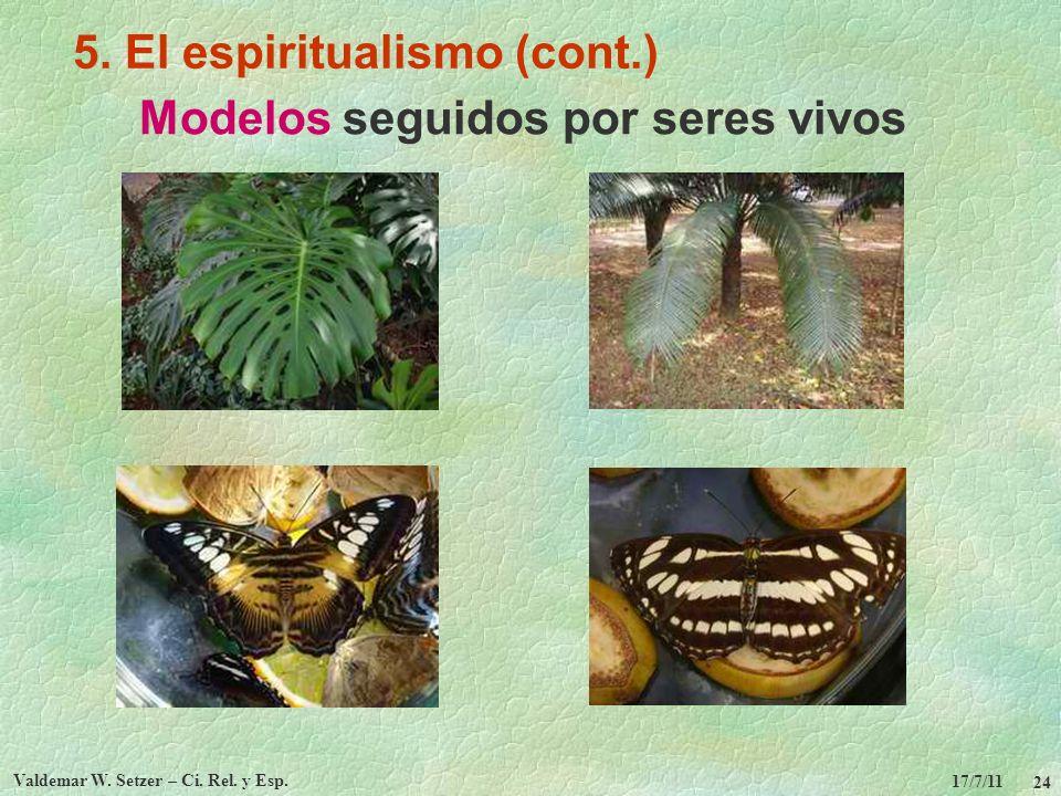 17/7/11 Valdemar W. Setzer – Ci. Rel. y Esp. 24 5. El espiritualismo (cont.) Modelos seguidos por seres vivos