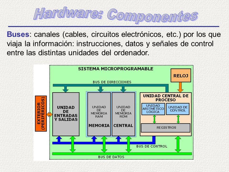 Buses: canales (cables, circuitos electrónicos, etc.) por los que viaja la información: instrucciones, datos y señales de control entre las distintas unidades del ordenador.