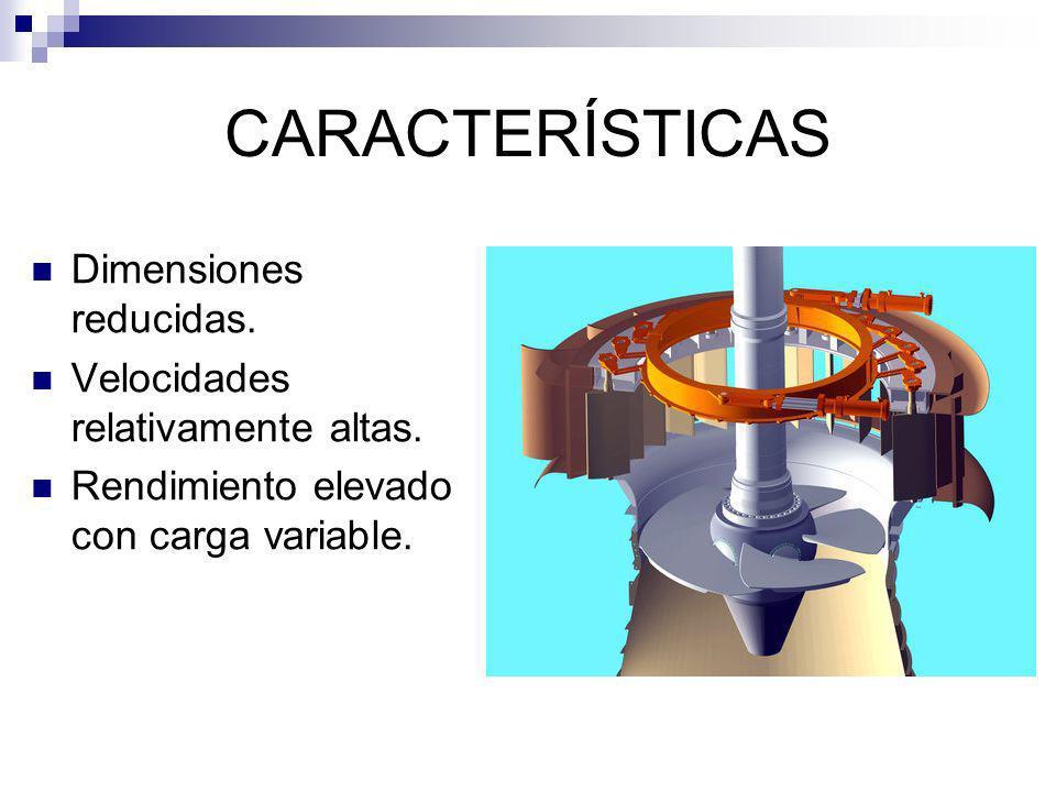 CARACTERÍSTICAS Dimensiones reducidas. Velocidades relativamente altas. Rendimiento elevado con carga variable.