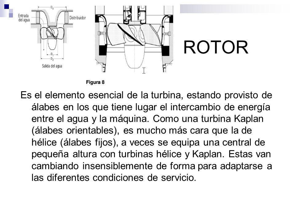 ROTOR Es el elemento esencial de la turbina, estando provisto de álabes en los que tiene lugar el intercambio de energía entre el agua y la máquina. C