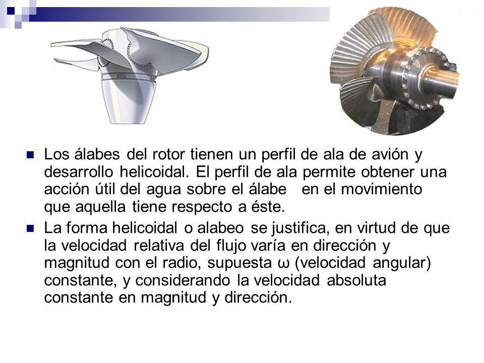 Los álabes del rotor tienen un perfil de ala de avión y desarrollo helicoidal. El perfil de ala permite obtener una acción útil del agua sobre el álab