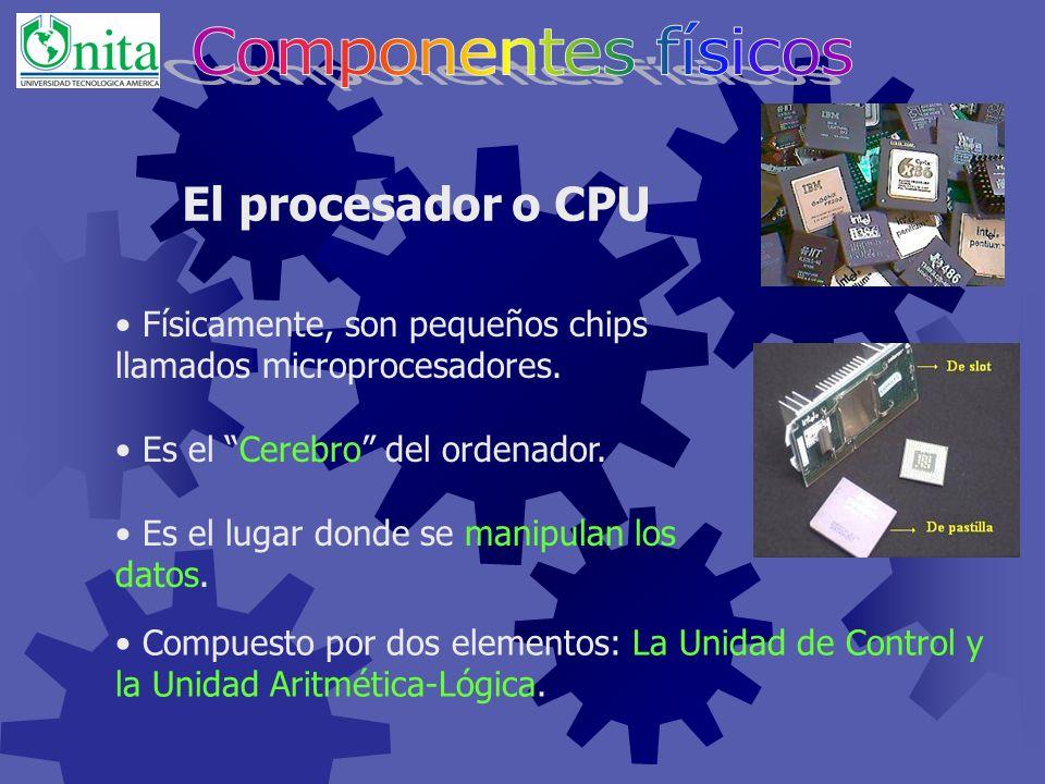 El zócalo es un lugar de la placa donde se conecta el procesador, el zócalo de pantalla es distinto al de slot. Se muestran distintas placas en distin