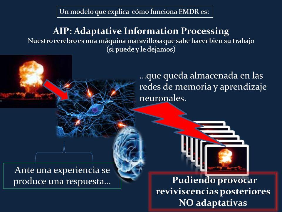 AIP: Adaptative Information Processing Nuestro cerebro es una máquina maravillosa que sabe hacer bien su trabajo (si puede y le dejamos) Ante una expe