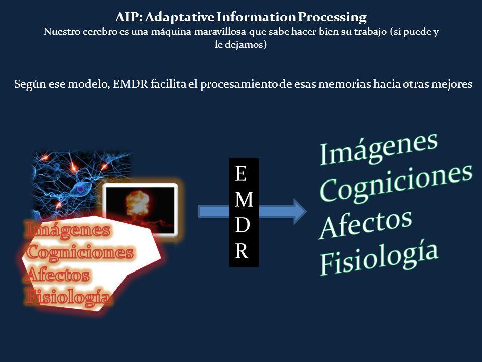 AIP: Adaptative Information Processing Nuestro cerebro es una máquina maravillosa que sabe hacer bien su trabajo (si puede y le dejamos) EMDREMDR Segú