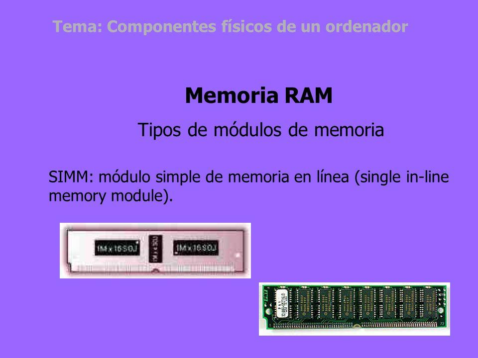 Son placas que contienen los chips de memoria y que se conectan a la tarjeta principal del ordenador. Son las piezas que se adquieren, para ampliar la