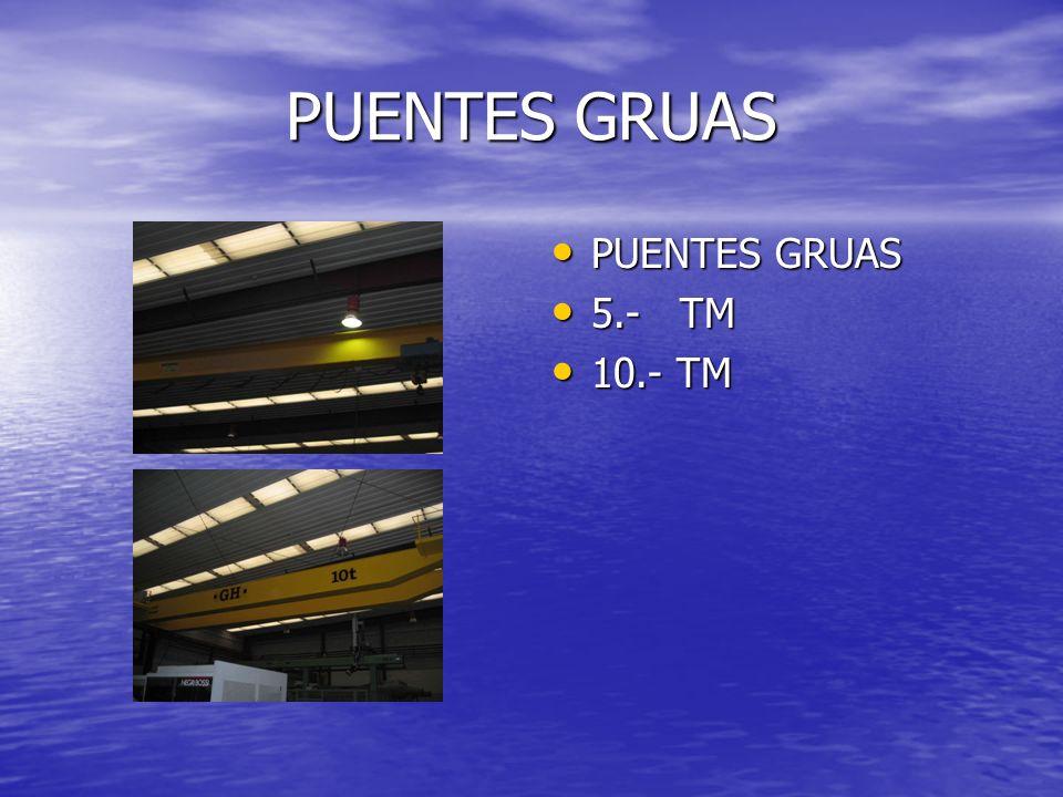 PUENTES GRUAS PUENTES GRUAS PUENTES GRUAS 5.- TM 5.- TM 10.- TM 10.- TM