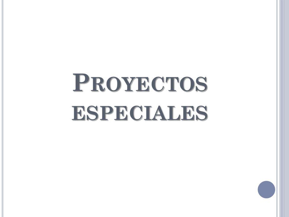 P ROYECTOS ESPECIALES
