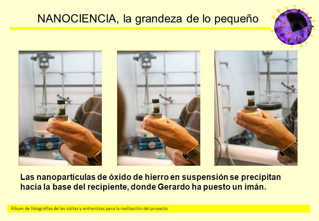 Álbum de fotografías de las visitas y entrevistas para la realización del proyecto NANOCIENCIA, la grandeza de lo pequeño Las nanopartículas de óxido de hierro en suspensión se precipitan hacia la base del recipiente, donde Gerardo ha puesto un imán.