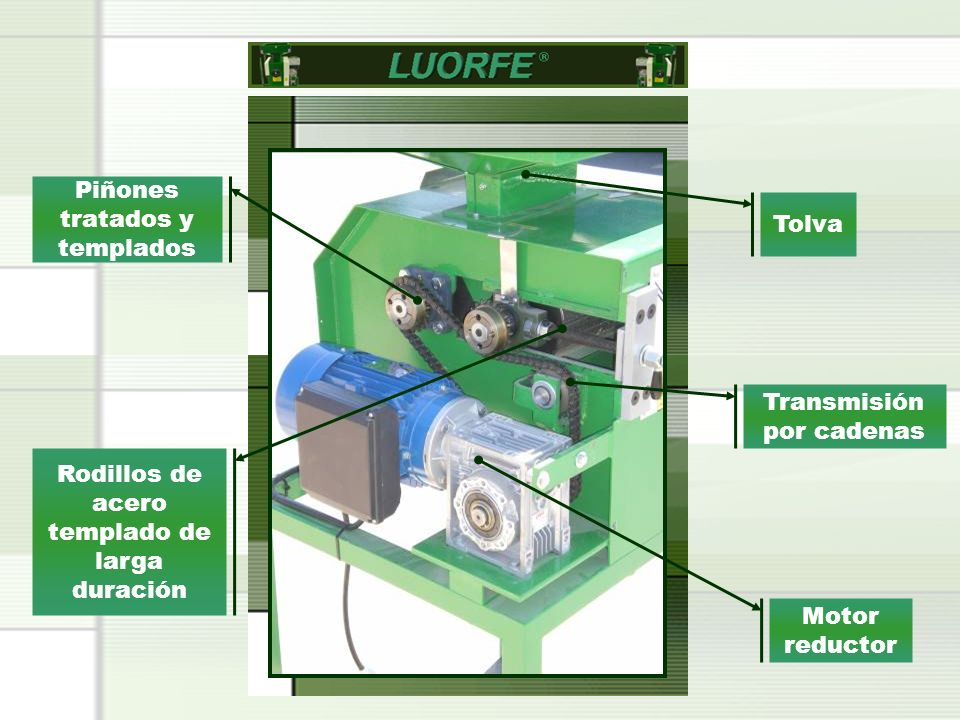 Motor reductor Piñones tratados y templados Transmisión por cadenas Rodillos de acero templado de larga duración Tolva