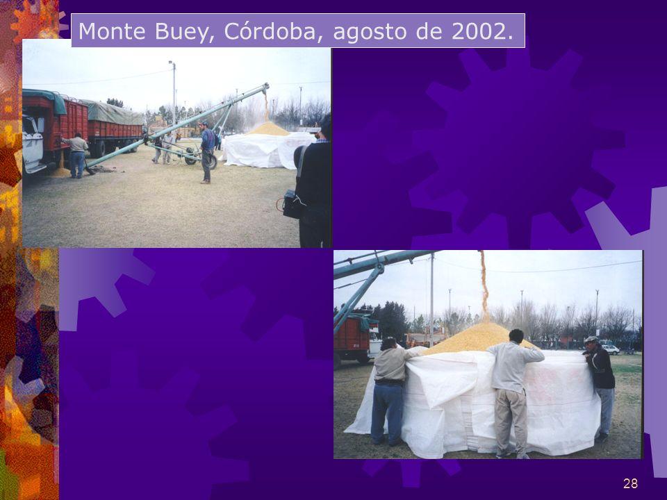 28 Monte Buey, Córdoba, agosto de 2002.