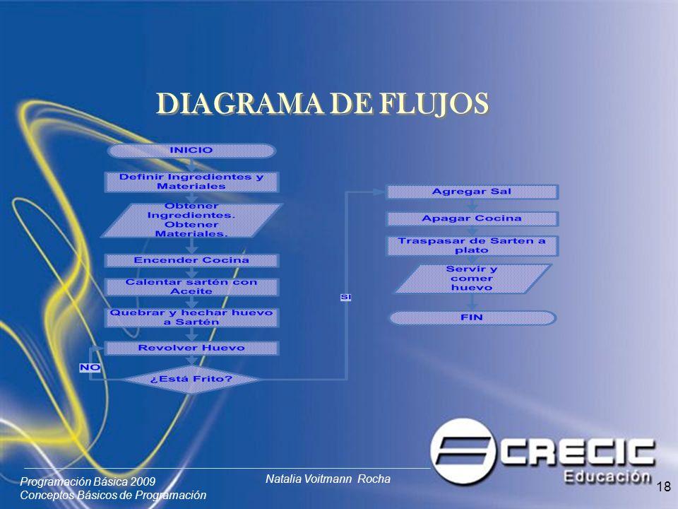 Programación Básica 2009 Conceptos Básicos de Programación Natalia Voitmann Rocha 18 DIAGRAMA DE FLUJOS