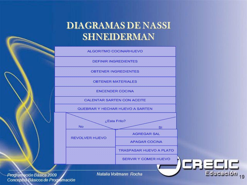 Programación Básica 2009 Conceptos Básicos de Programación Natalia Voitmann Rocha 19 DIAGRAMAS DE NASSI SHNEIDERMAN