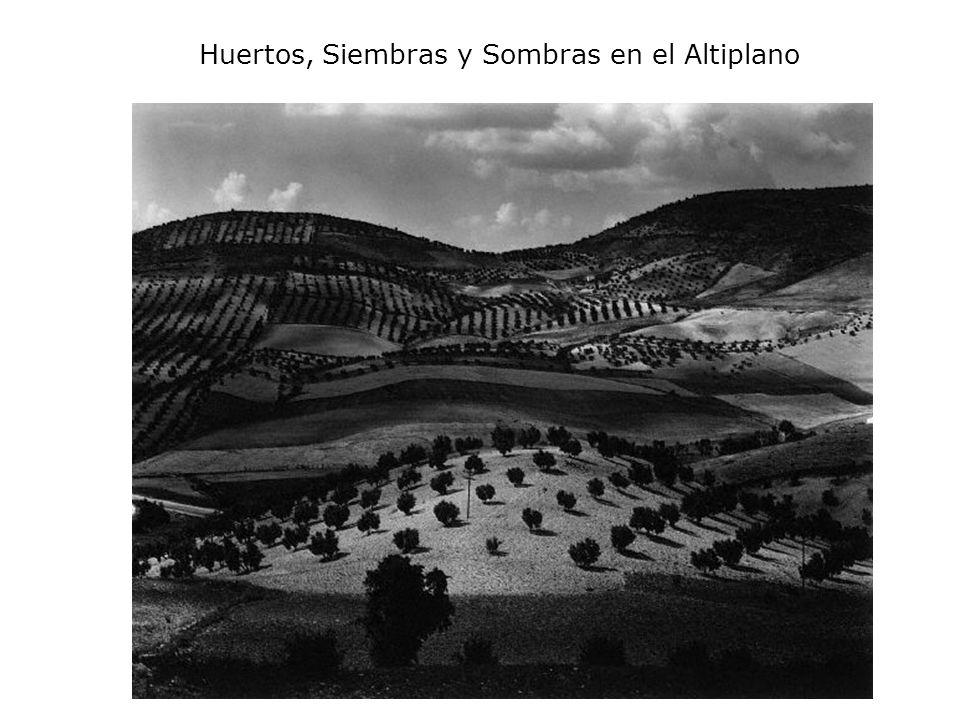 Huertos, Siembras y Sombras en el Altiplano