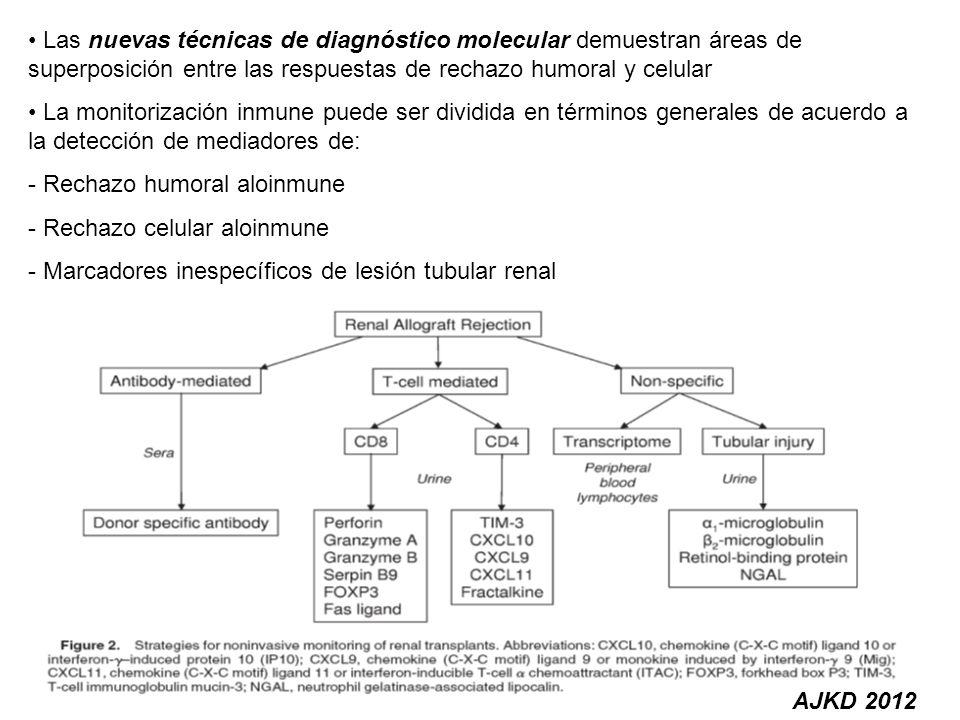 AJKD 2012 Las nuevas técnicas de diagnóstico molecular demuestran áreas de superposición entre las respuestas de rechazo humoral y celular La monitori