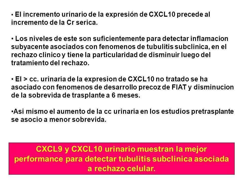 El incremento urinario de la expresión de CXCL10 precede al incremento de la Cr serica. Los niveles de este son suficientemente para detectar inflamac