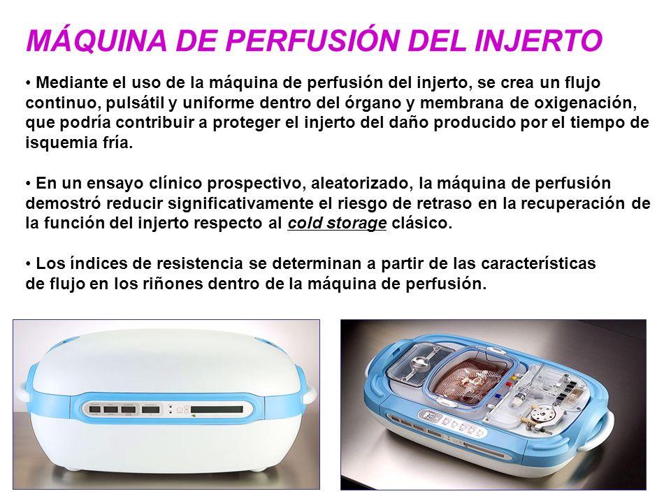 MÁQUINA DE PERFUSIÓN DEL INJERTO Mediante el uso de la máquina de perfusión del injerto, se crea un flujo continuo, pulsátil y uniforme dentro del órg