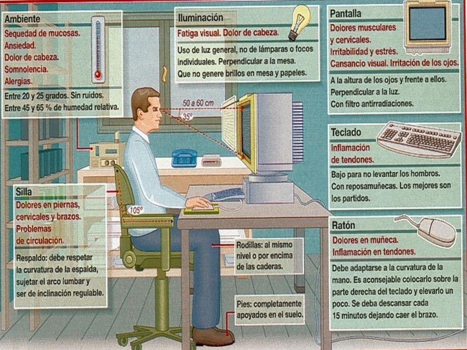 POSTURA CORPORAL El diseño del puesto de trabajo debe permitir que se pueda adoptar la siguiente postura, que ha de tenerse en cuenta como referencia.