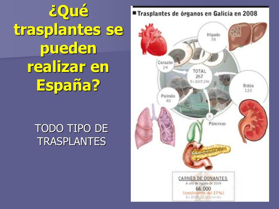 ¿Qué trasplantes se pueden realizar en España? TODO TIPO DE TRASPLANTES