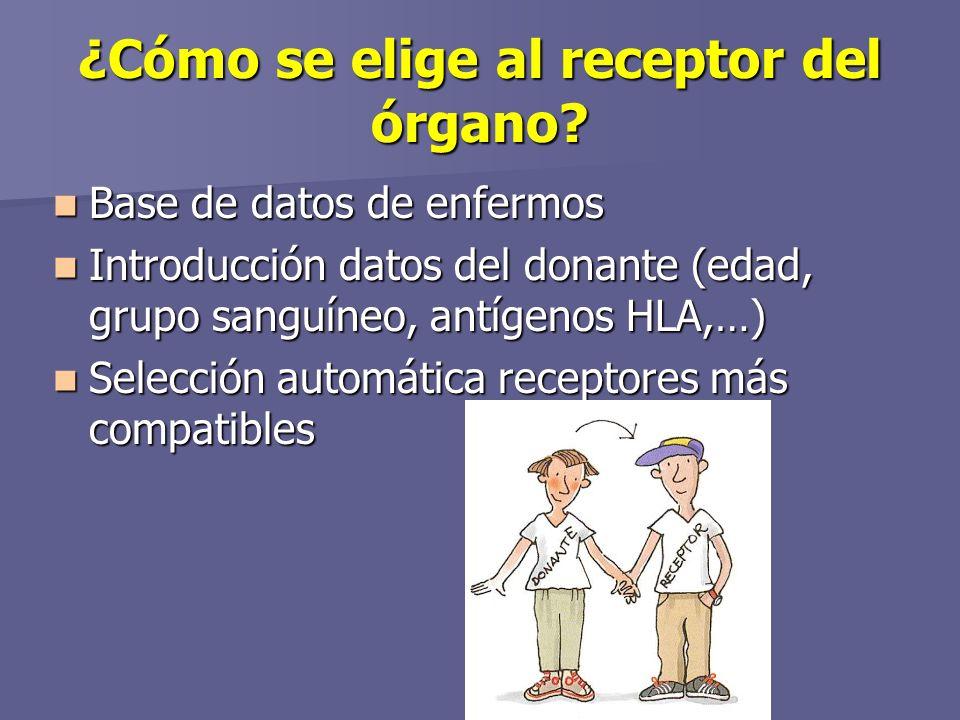 ¿Cómo se elige al receptor del órgano.