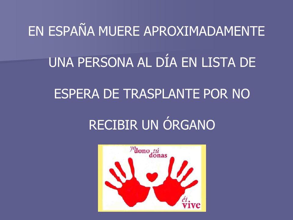 EN ESPAÑA MUERE APROXIMADAMENTE UNA PERSONA AL DÍA EN LISTA DE ESPERA DE TRASPLANTE POR NO RECIBIR UN ÓRGANO