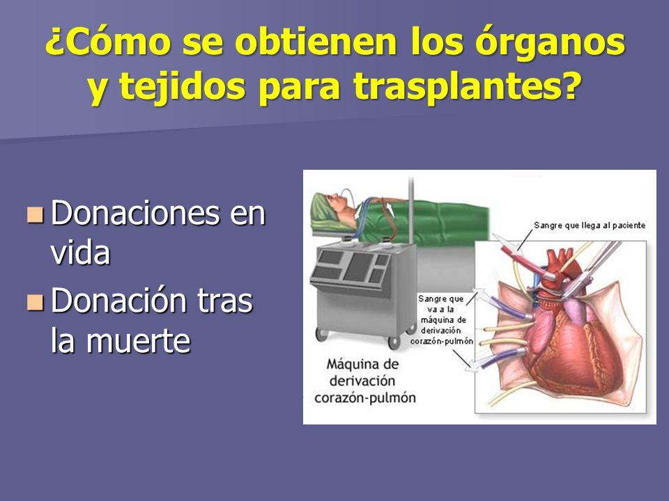 ¿Cómo se obtienen los órganos y tejidos para trasplantes.