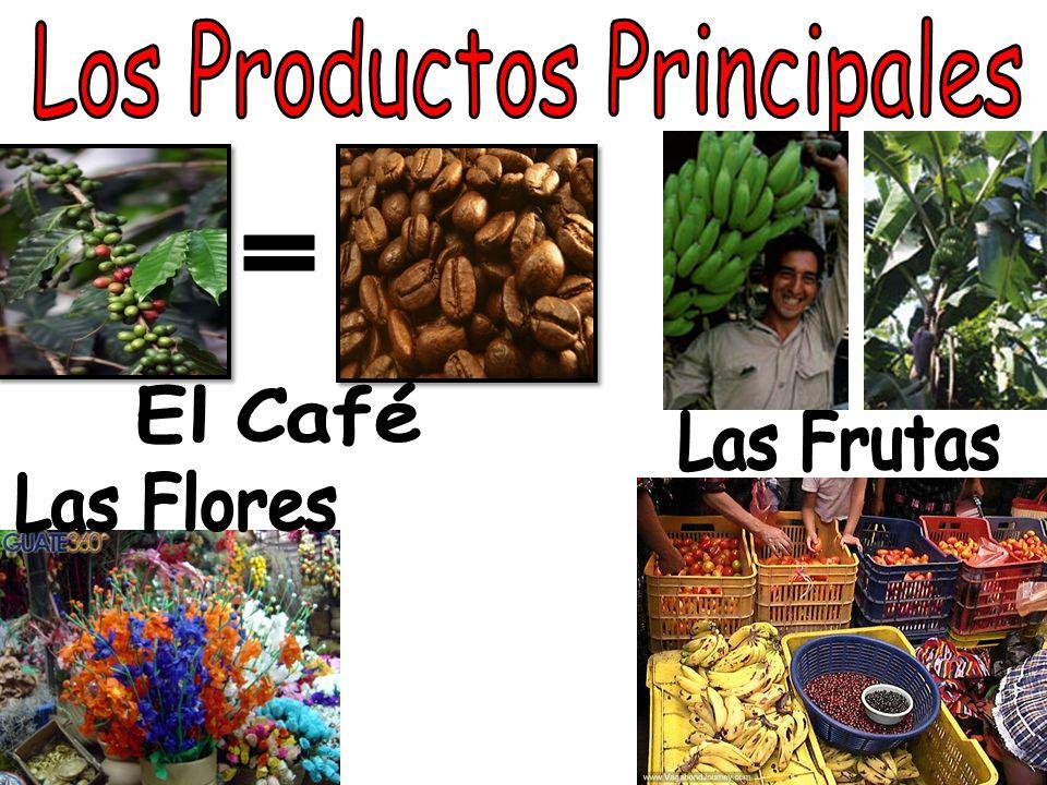 LOS MERCADOS Venden las frutas, las telas y las flores en los mercados.