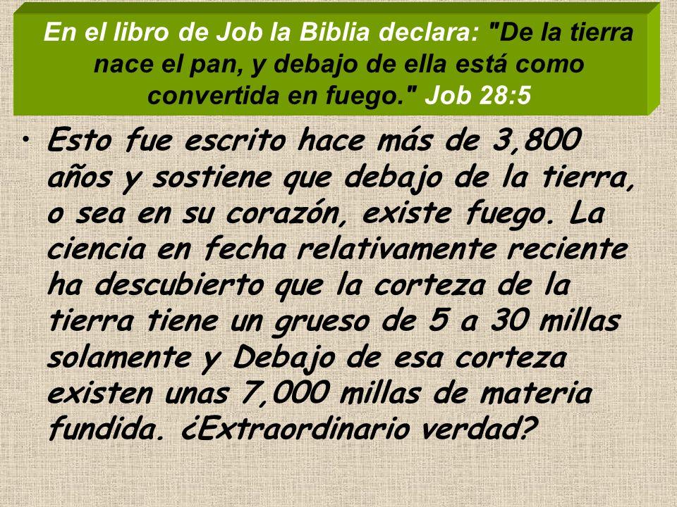 En el libro de Job la Biblia declara: