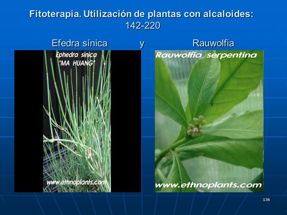 136 Fitoterapia. Utilización de plantas con alcaloides: 142-220 Efedra sínica y Rauwolfia