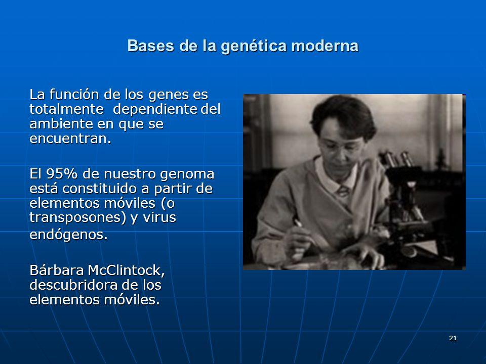 21 Bases de la genética moderna La función de los genes es totalmente dependiente del ambiente en que se encuentran. El 95% de nuestro genoma está con
