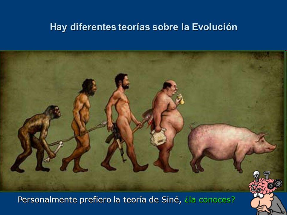 Hay diferentes teorías sobre la Evolución Personalmente prefiero la teoría de Siné, ¿la conoces?